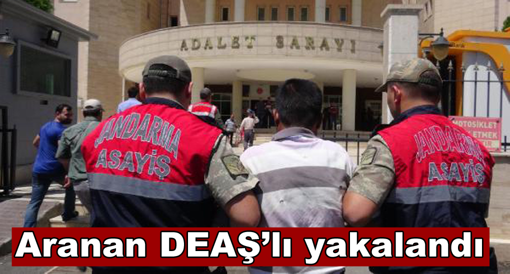 Ceylanpınar'da aranan DEAŞ'lı yakalandı