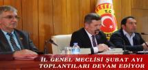 İL GENEL MECLİSİ ŞUBAT AYI TOPLANTILARI DEVAM EDİYOR