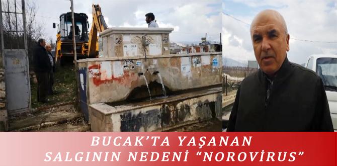 "BUCAK'TA YAŞANAN SALGININ NEDENİ ""NOROVİRUS"""
