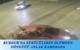 BURDUR'DA SÜRÜCÜLERİN ÖLÜMDEN DÖNDÜĞÜ ANLAR KAMERADA