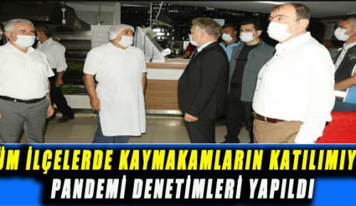 TÜM İLÇELERDE KAYMAKAMLARIN KATILIMIYLA PANDEMİ DENETİMLERİ YAPILDI