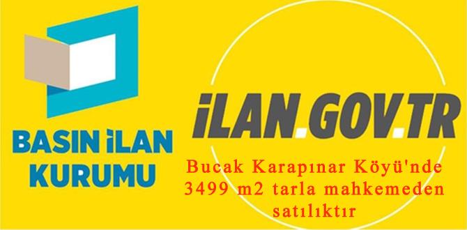 Bucak Karapınar Köyü'nde 3499 m2 tarla mahkemeden satılıktır
