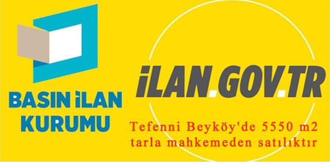 Tefenni Beyköy'de 5550 m2 tarla mahkemeden satılıktır